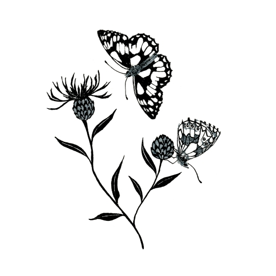 Marbled white square
